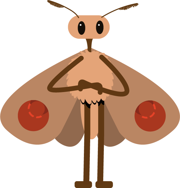 Fin's Moth.png